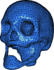 Cgal-skull-surface.png
