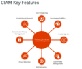 Key-features-of-ciam.png